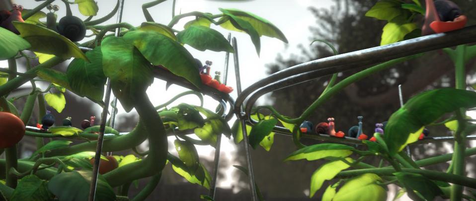 TomatoPlant